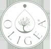 Oligea Essenze ed Estratti Biologici delle Terre di Toscana